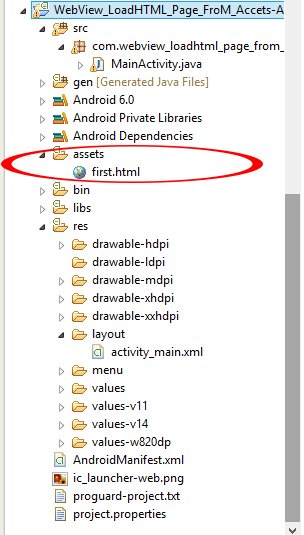 Load local html file in webview on android - Android Examples