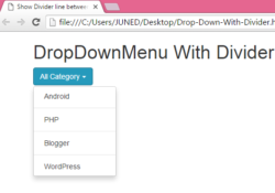 Show Divider line between Drop Down Menu items using Bootstrap classes in HTML,PHP