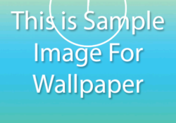 wallpapermanager-1