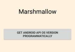 Get Retrieving Android API OS Platform version programmatically