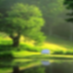 Android Apply Blur Effect on Application Background Image Programmatically